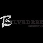 Belvedere Mykonos Hotel